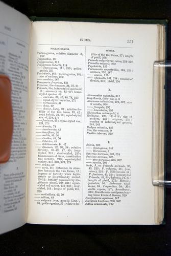 Image of Darwin-F1277-1877-351
