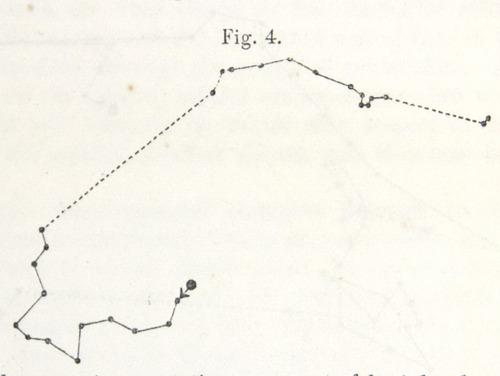 Image of Darwin-F1325-1880-zzzz-det-014