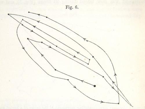 Image of Darwin-F1325-1880-zzzz-det-016