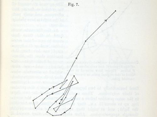 Image of Darwin-F1325-1880-zzzz-det-017