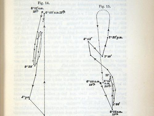 Image of Darwin-F1325-1880-zzzz-det-025