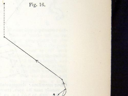 Image of Darwin-F1325-1880-zzzz-det-027