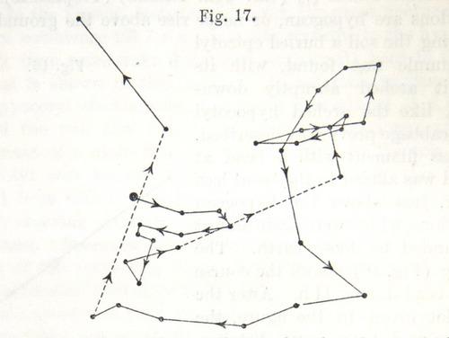 Image of Darwin-F1325-1880-zzzz-det-028