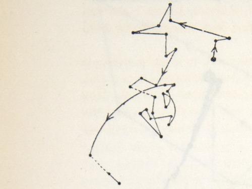 Image of Darwin-F1325-1880-zzzz-det-056