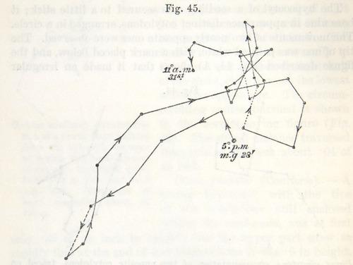 Image of Darwin-F1325-1880-zzzz-det-058