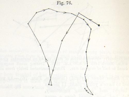 Image of Darwin-F1325-1880-zzzz-det-206