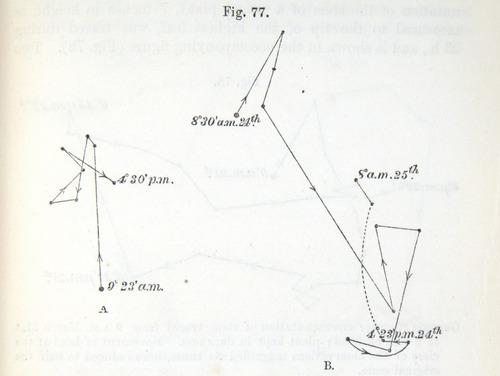Image of Darwin-F1325-1880-zzzz-det-207