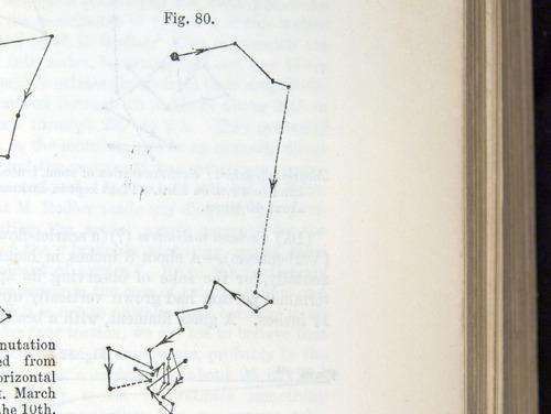 Image of Darwin-F1325-1880-zzzz-det-209