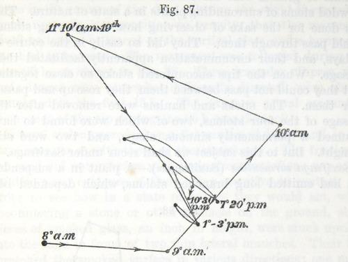 Image of Darwin-F1325-1880-zzzz-det-217