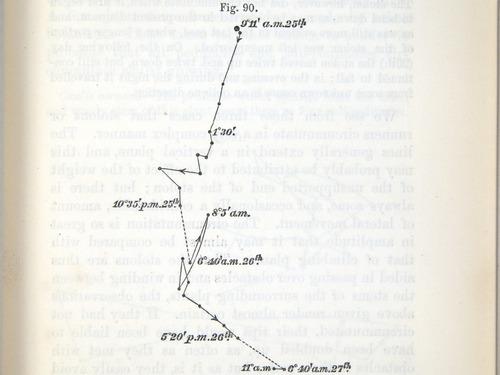 Image of Darwin-F1325-1880-zzzz-det-221
