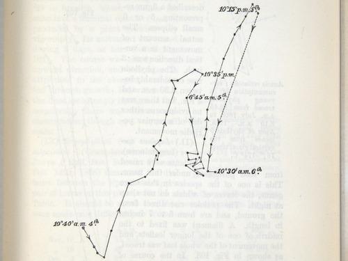 Image of Darwin-F1325-1880-zzzz-det-237