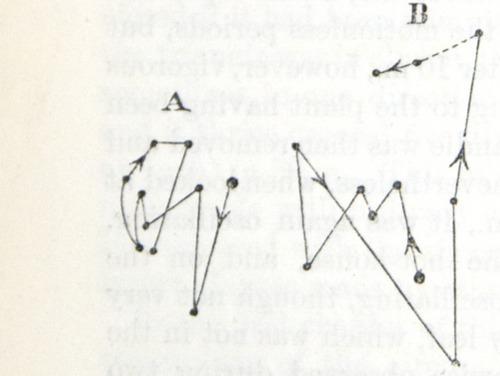 Image of Darwin-F1325-1880-zzzz-det-244