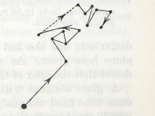 Image of Darwin-F1325-1880-zzzz-det-253-2