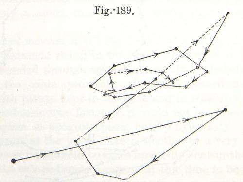 Image of Darwin-F1325-1880-zzzz-det-506