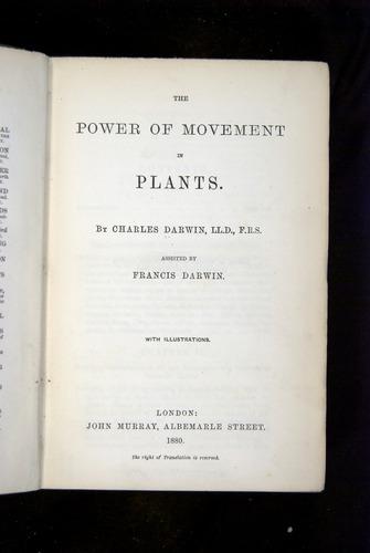 Image of Darwin-F1325-1880-000-tp2