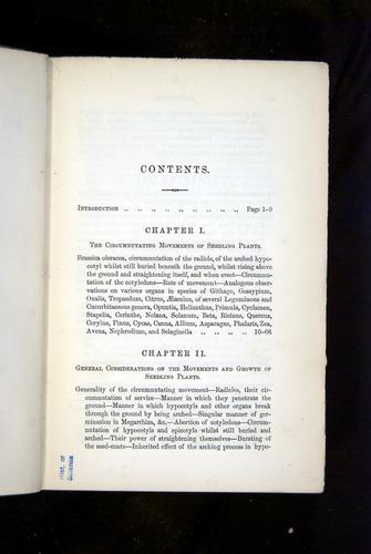 Image of Darwin-F1325-1880-000-z05