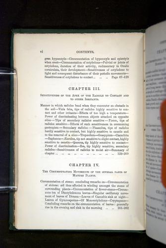 Image of Darwin-F1325-1880-000-z06