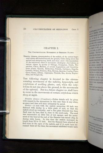 Image of Darwin-F1325-1880-010
