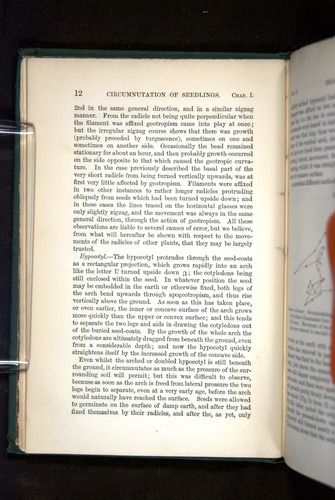 Image of Darwin-F1325-1880-012