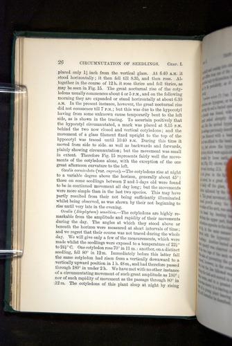 Image of Darwin-F1325-1880-026