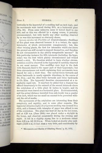 Image of Darwin-F1325-1880-047