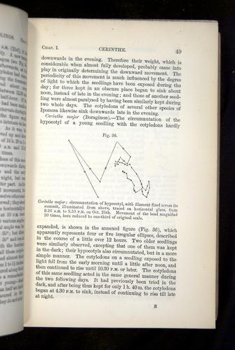 Image of Darwin-F1325-1880-049