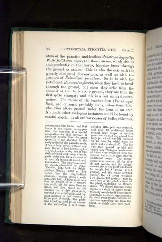 Image of Darwin-F1325-1880-086