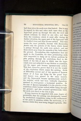 Image of Darwin-F1325-1880-090