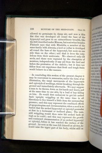 Image of Darwin-F1325-1880-106