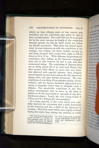 Image of Darwin-F1325-1880-110