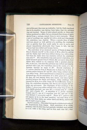 Image of Darwin-F1325-1880-126