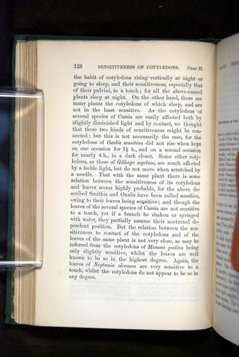 Image of Darwin-F1325-1880-128