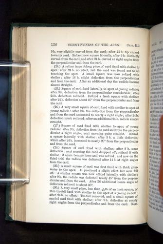 Image of Darwin-F1325-1880-138