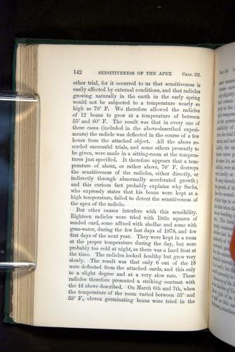 Image of Darwin-F1325-1880-142