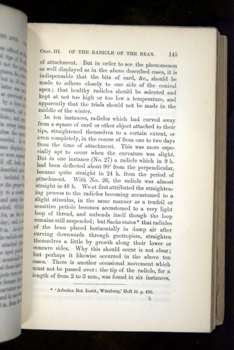 Image of Darwin-F1325-1880-145