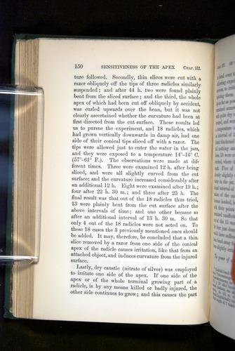 Image of Darwin-F1325-1880-150
