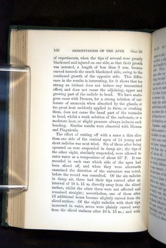 Image of Darwin-F1325-1880-166