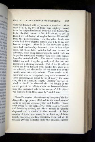 Image of Darwin-F1325-1880-169