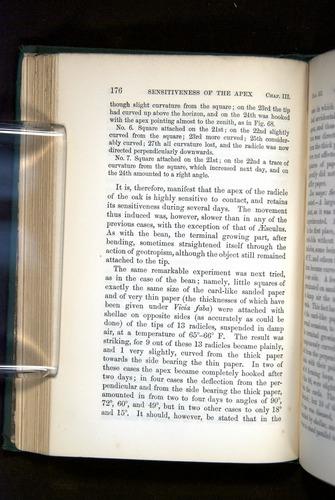 Image of Darwin-F1325-1880-176