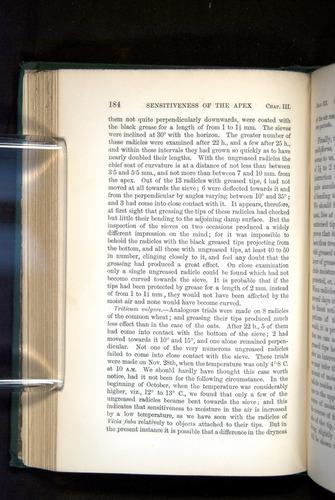 Image of Darwin-F1325-1880-184
