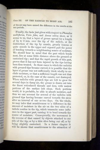 Image of Darwin-F1325-1880-185