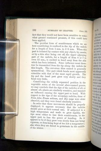 Image of Darwin-F1325-1880-192