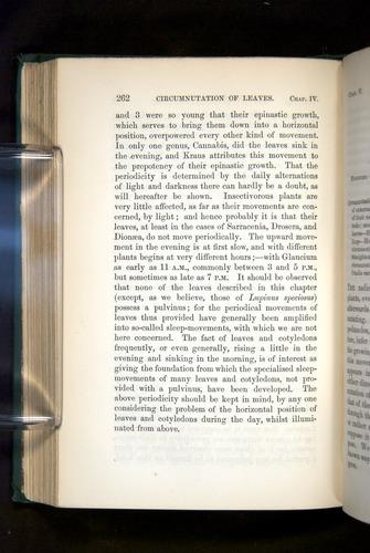 Image of Darwin-F1325-1880-262
