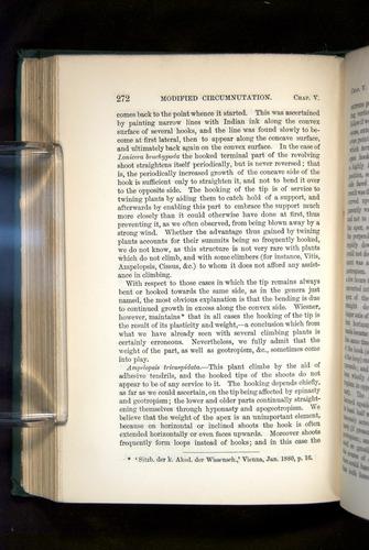 Image of Darwin-F1325-1880-272