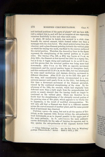 Image of Darwin-F1325-1880-276