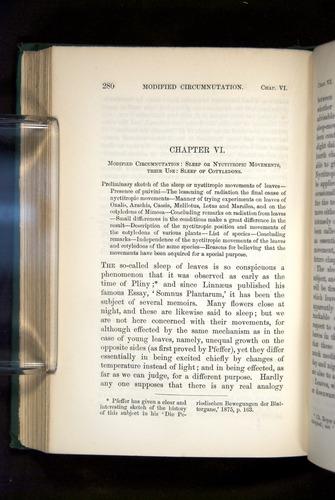 Image of Darwin-F1325-1880-280