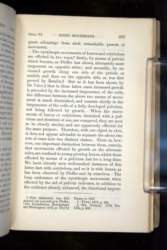 Image of Darwin-F1325-1880-283
