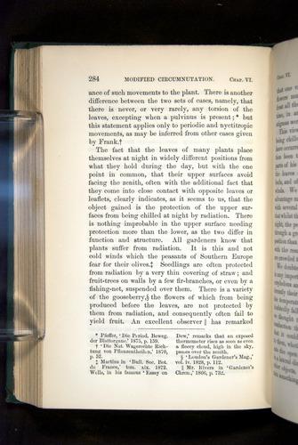 Image of Darwin-F1325-1880-284
