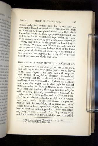 Image of Darwin-F1325-1880-297