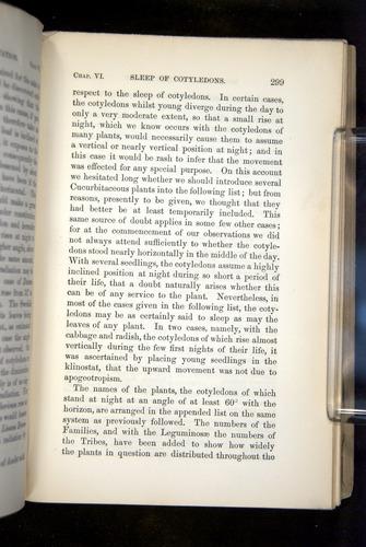 Image of Darwin-F1325-1880-299
